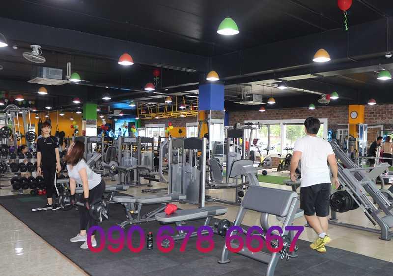 Tư vấn thiết kế phòng gym từ A đến Z
